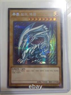 Yugioh blue eyes white dragon sdk-001 super rare 1st NA ed & Jap set & DDS orica